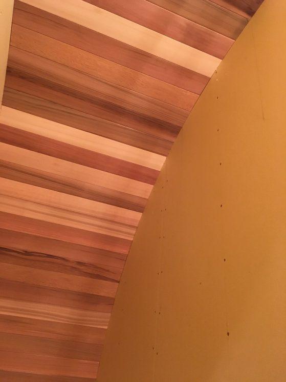 階段のカーブがかかった天井を見上げる